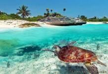 Playa del Carmen Meksika