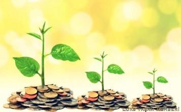 Yatırım Fonu Nedir? Fon Tipleri Nelerdir?