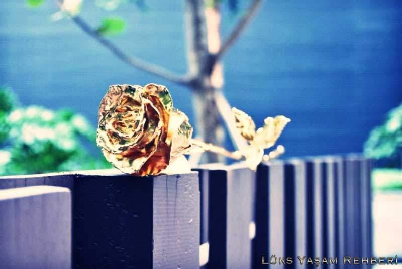 Altın Gül - 2