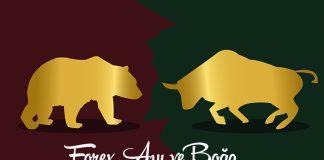 Forex Ayı ve Boğa Piyasası Nedir?