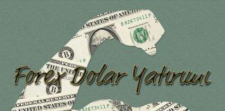 Forex Dolar Yatırımı