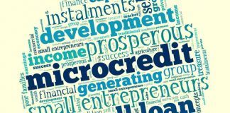 Mikro Kredi Nedir ? Nasıl Alınır ?